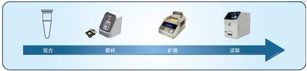 pcr系统  简单实验流程