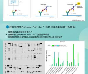 蛋白多因子筛选