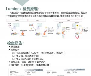 Luminex液相悬浮芯片检测服务